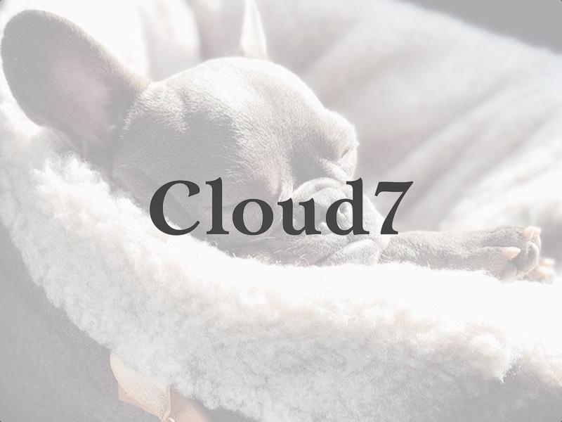 An interview with Cloud 7 – High Quality Functional Dog Products