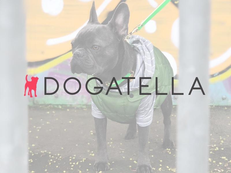 An Interview with Dogatella – British Designer Dog Collars and Leashes