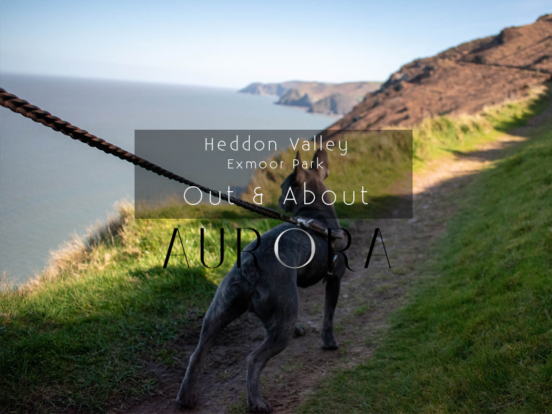 Heddon Valley – Exmoor National Park