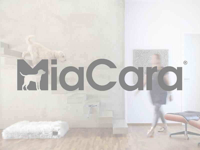 An interview with MiaCara - Stylish Dog Accessories and Luxury Dog Beds