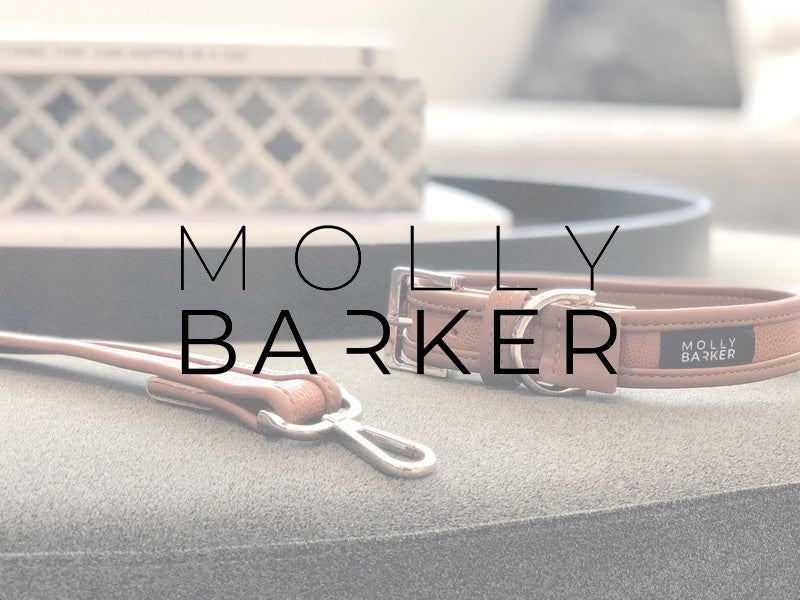 An interview with Molly Barker - Premium Dog Accessories