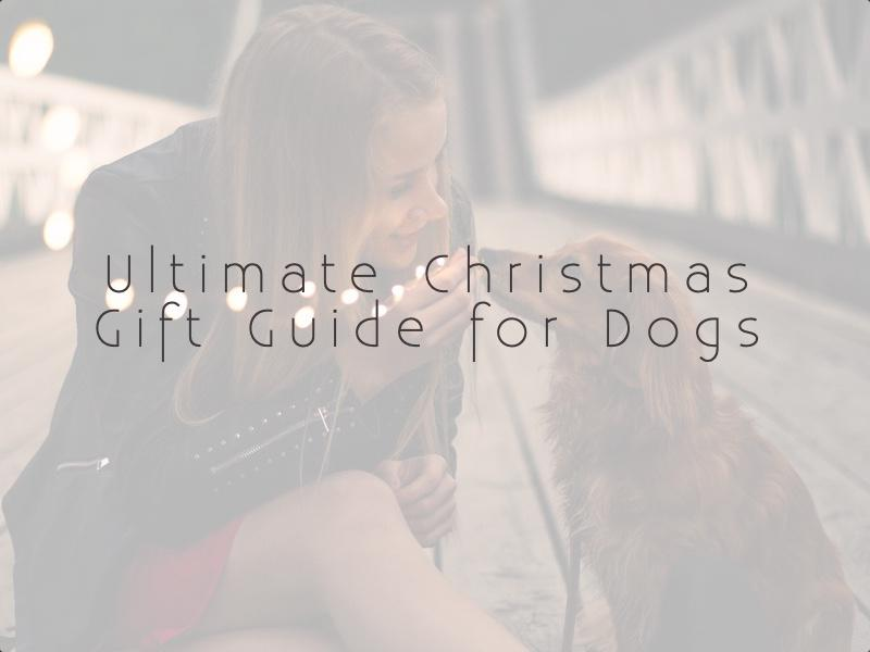 Best Christmas gift ideas for dogs and dog lovers 2018