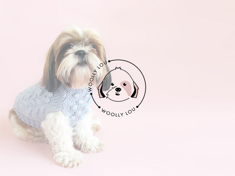 An interview with Woolly Lou – High Quality Dog Jumpers