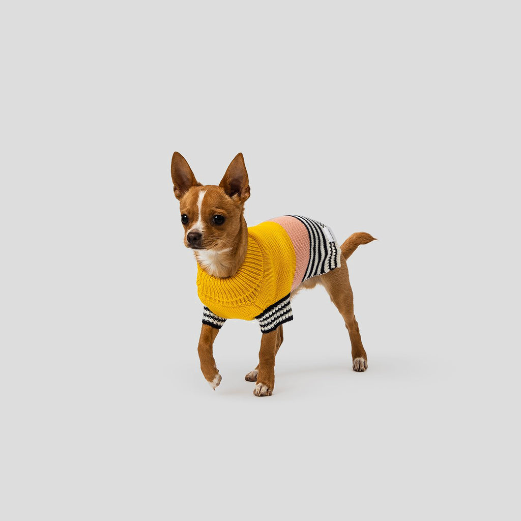 Mister Woof Harlow Dog Knit Jumper