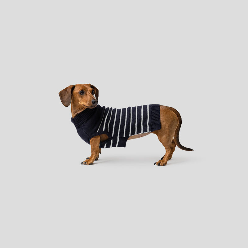 Mister Woof Quinn Dog Knit Jumper