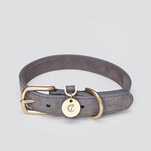 Cloud7 Tiergarten Nubuck Leather Dog Collar