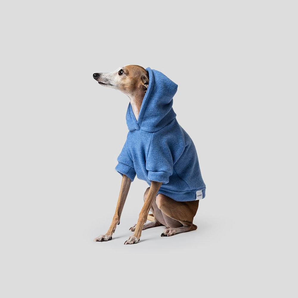 Mister Woof Theodore Dog Hoodie