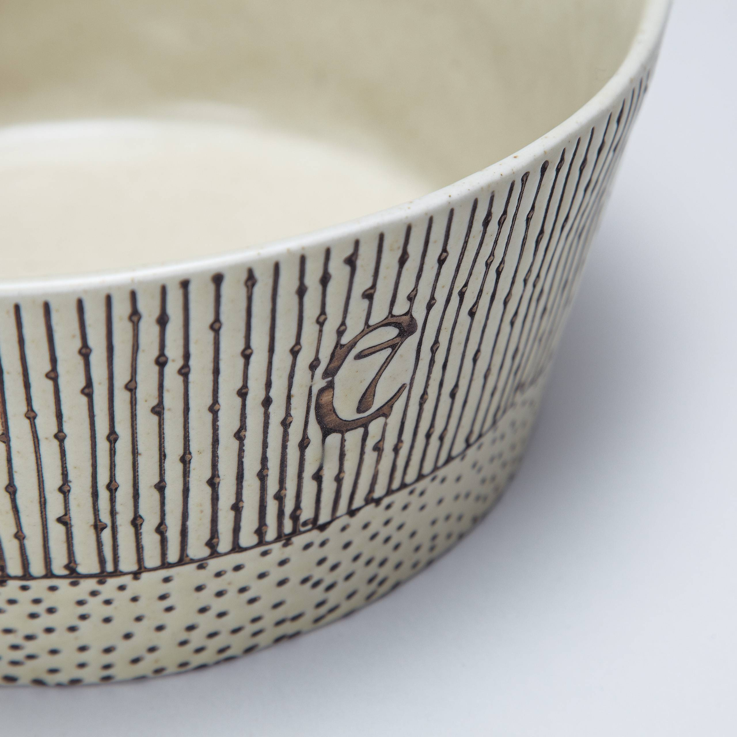stylish ceramic dog bowl with stripes