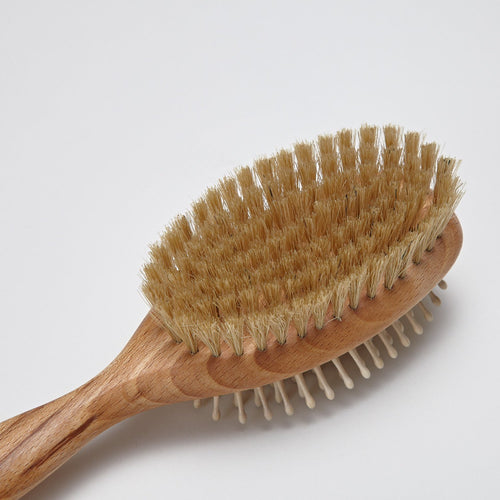 bristle dog brush