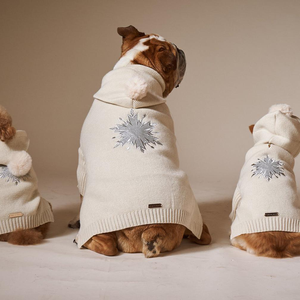 jumper to keep dogs warm in autumn