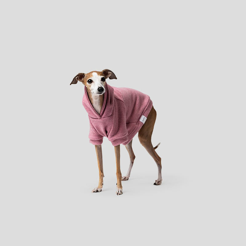 Mister Woof dog jumper