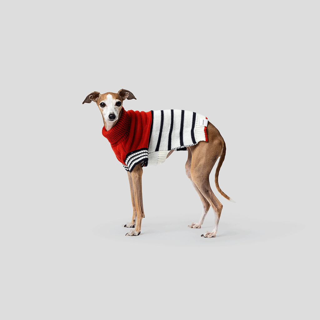 Mister Woof Emerson Dog Knit Jumper