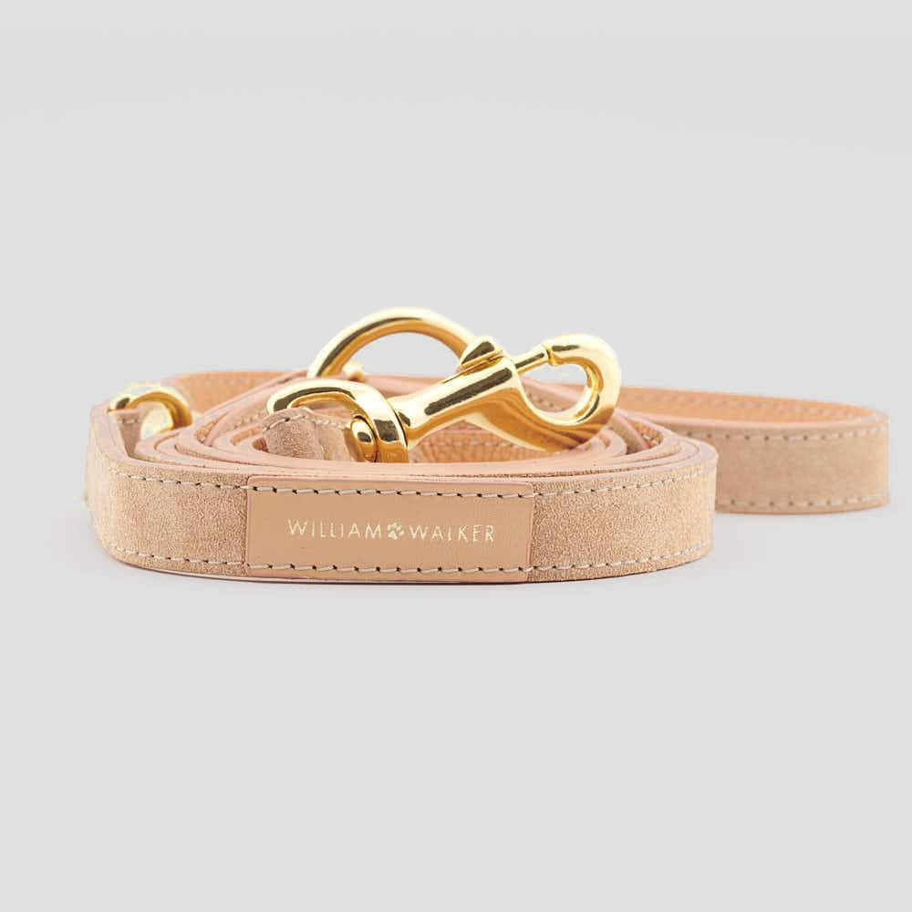 William Walker Leather Dog Leash - Coral