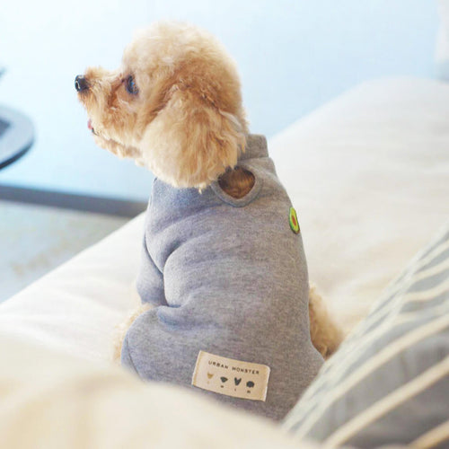 stylish winter jumper for small dogs