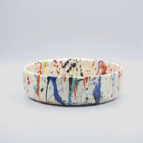 btw Ceramics Rainbow Torrent Ceramic Dog Bowl