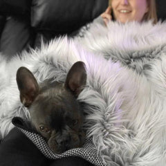 soft luxury dog bed blanket