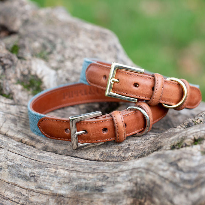 Pippa & Co Luxury Dog Collar