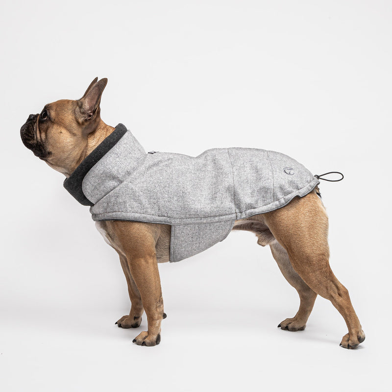 Cloud7 Brooklyn French Bulldog Flannel Grey Dog Coat
