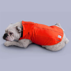 dog coat for large dogs