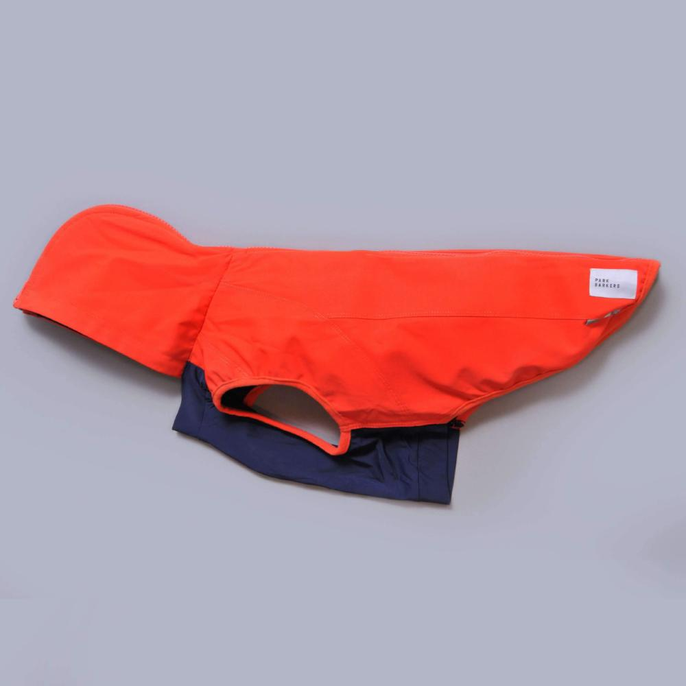 bright coloured dog coat