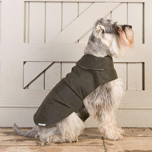 green waxed dog coat
