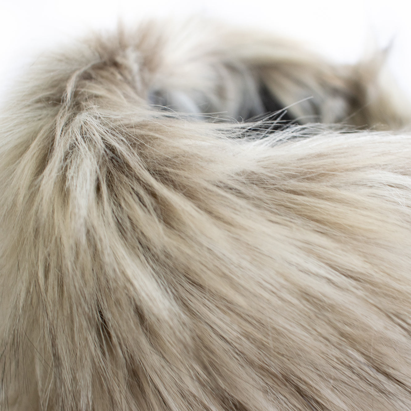 designer fur snood for dogs