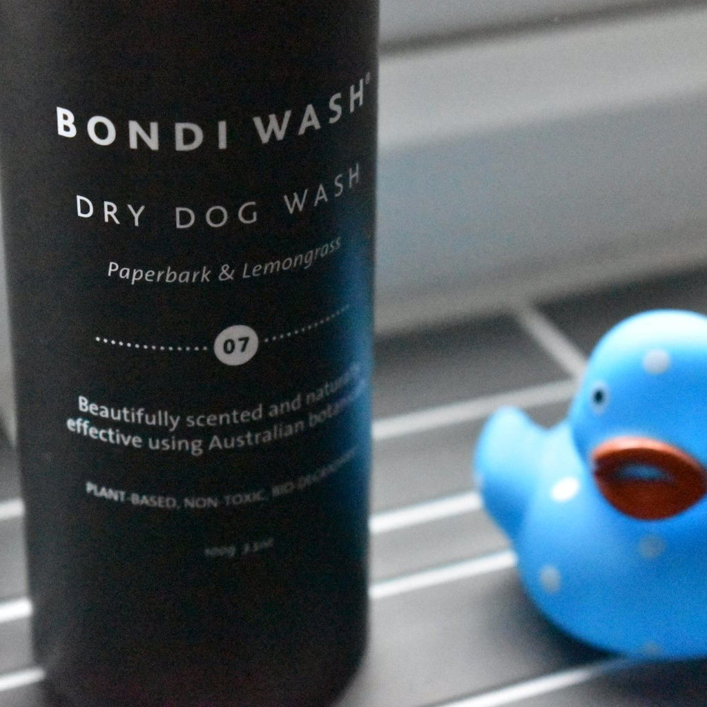 Luxury dry dog shampoo