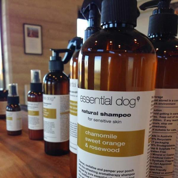 natural sensitive dog shampoo