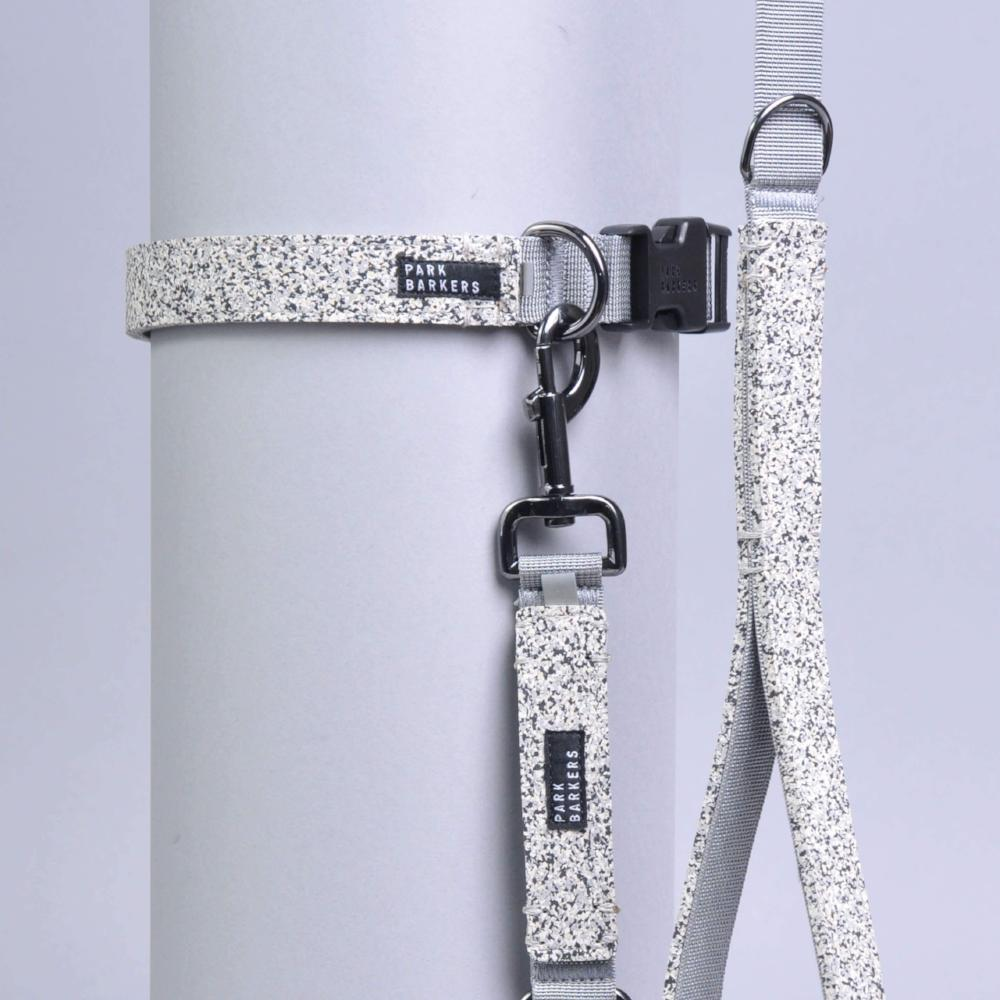 matching grey dog collar and leash