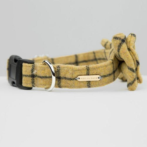 bow collar for dogs