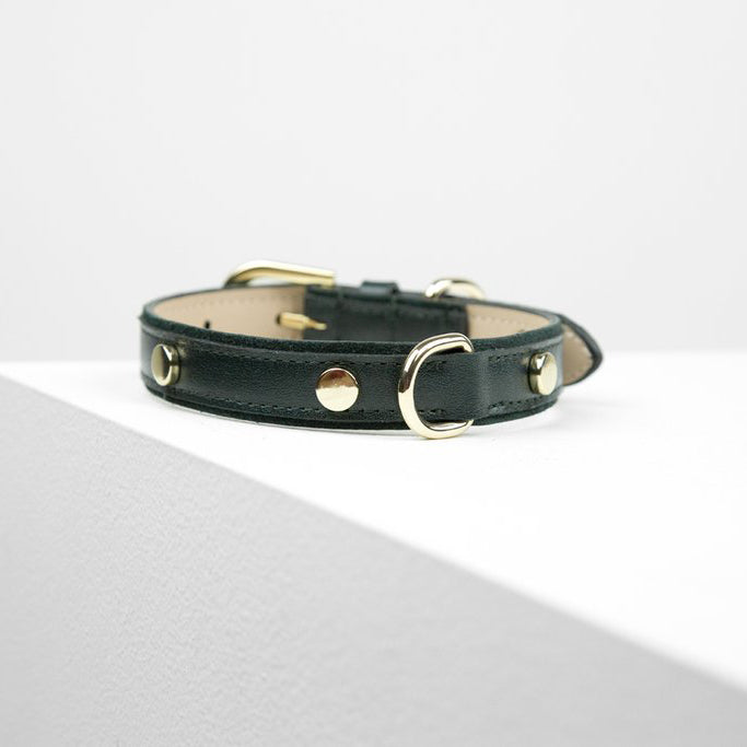 leather studded dog collar