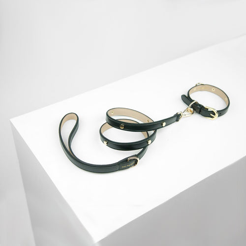 leather studded dog leash