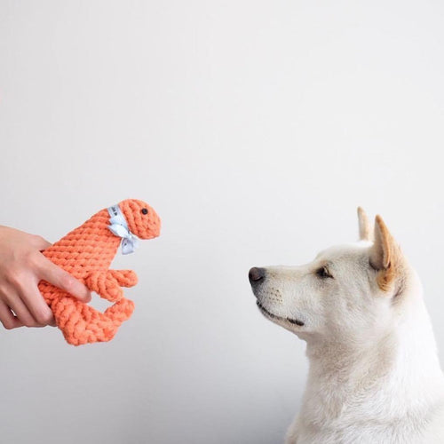 dinosaur dog toy
