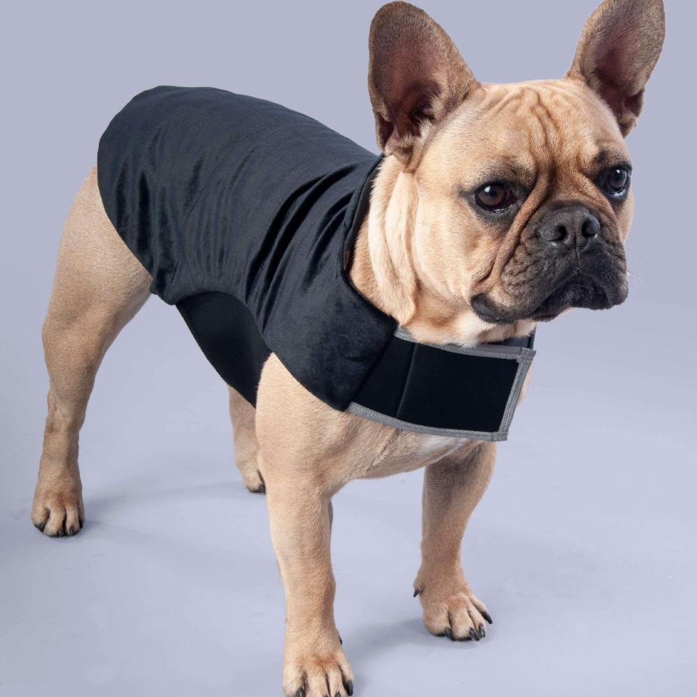 park barkers stylish puppy coat