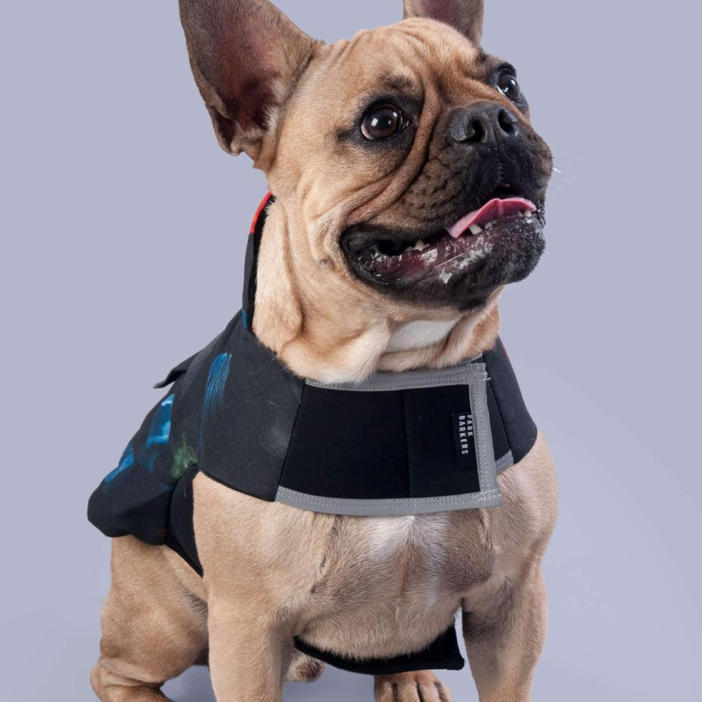 dog jacket with velcro fastening