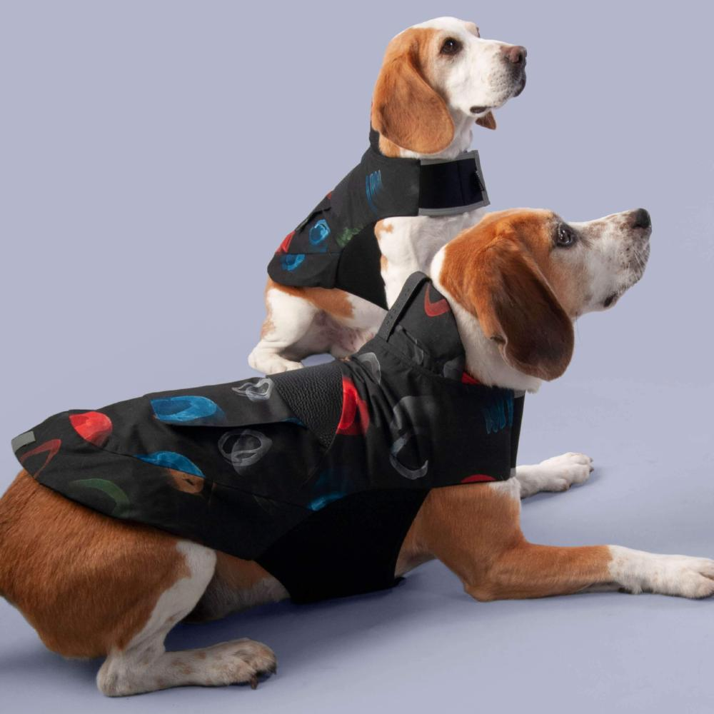 eco friendly dog apparel