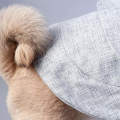 grey and white stylish dog coat