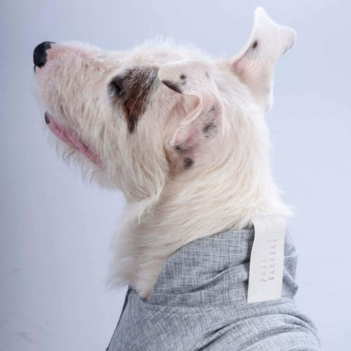 park barkers grey designer dog jacket