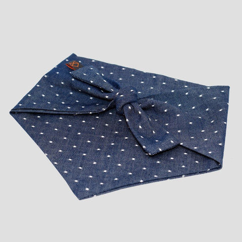 Modern Beast Polka Dot Dog Bow Tie