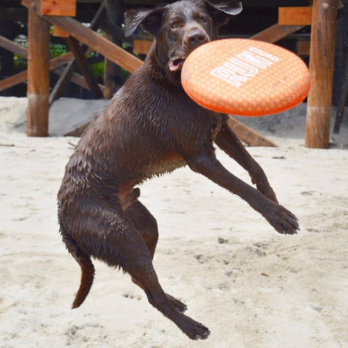 waterproof dog frisbee uk
