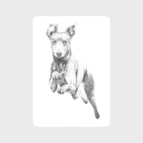 whippet art print uk