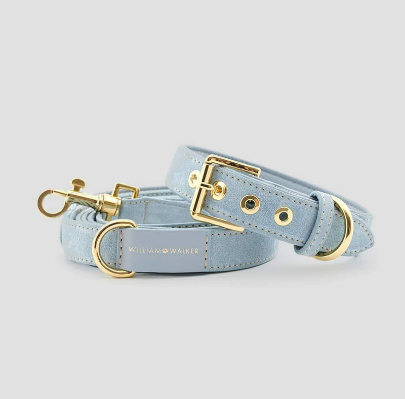 William Walker City Dog Leash - Sky