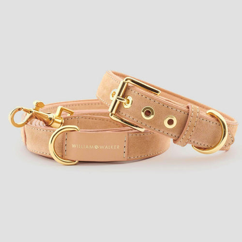 William Walker City Dog Leash - Coral
