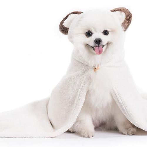 cute dog towel