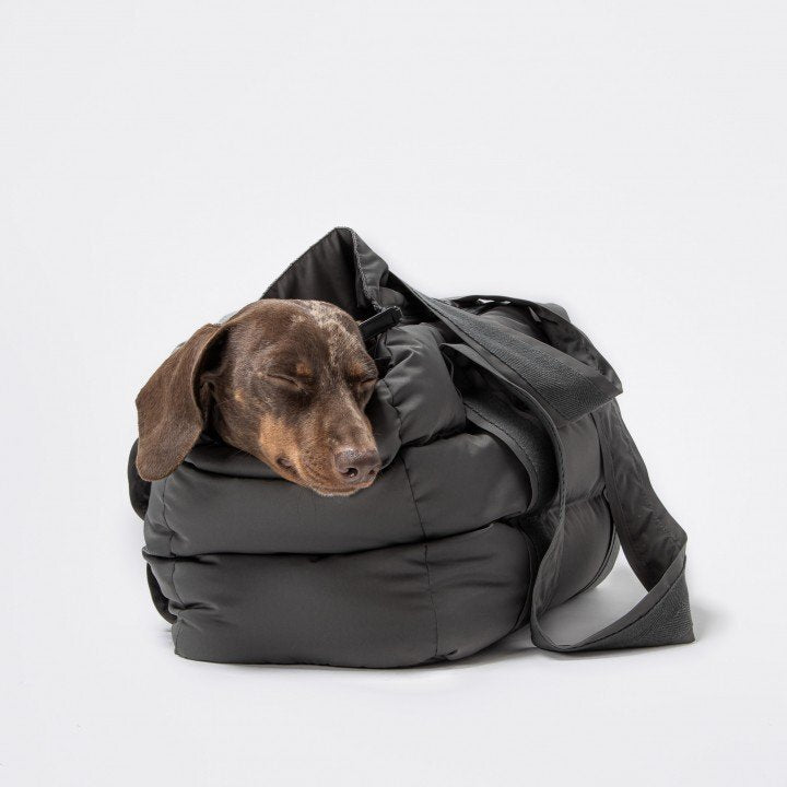 Cloud7 Montreal Anthra Dog Carrier