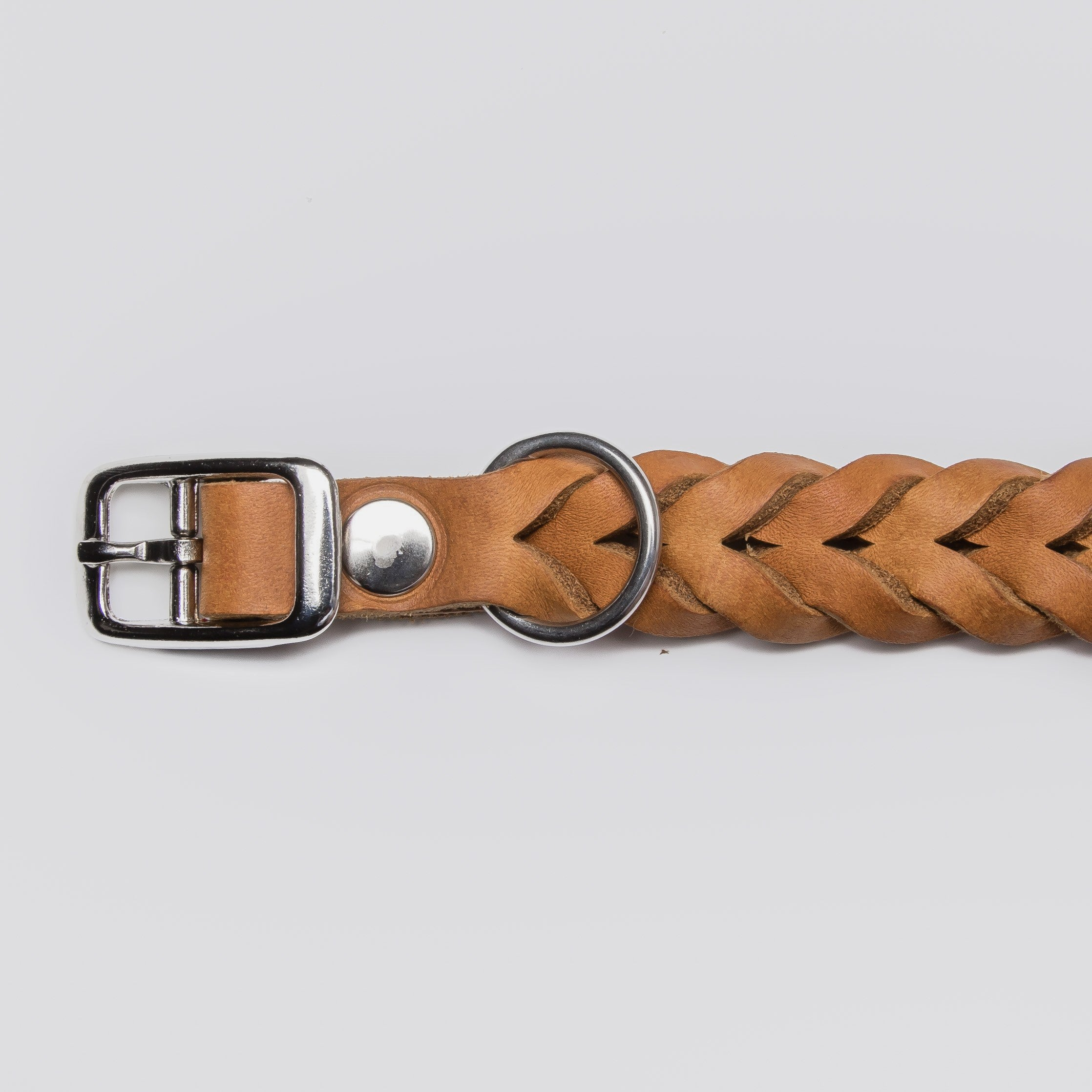 camel leather dog collar