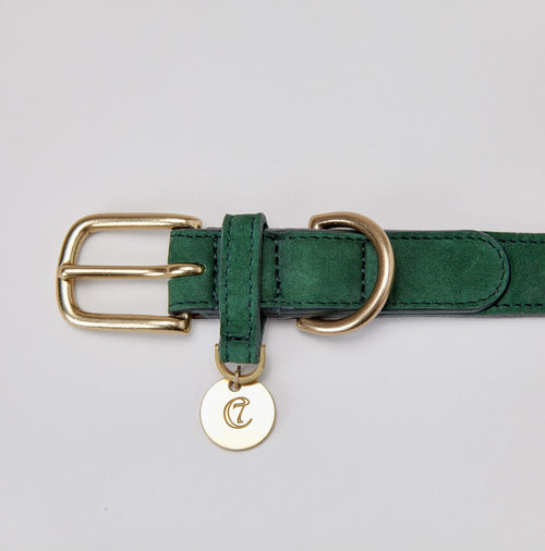 luxury leather green dog collar