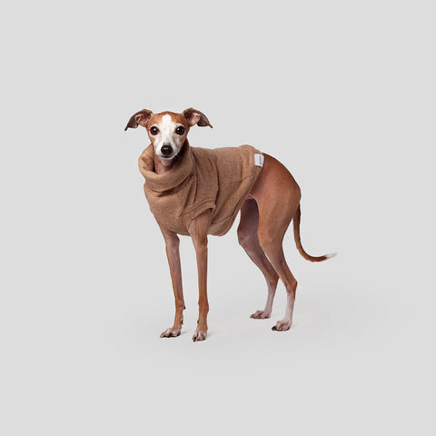 Max Bone 11 Howard Dog Hoodie