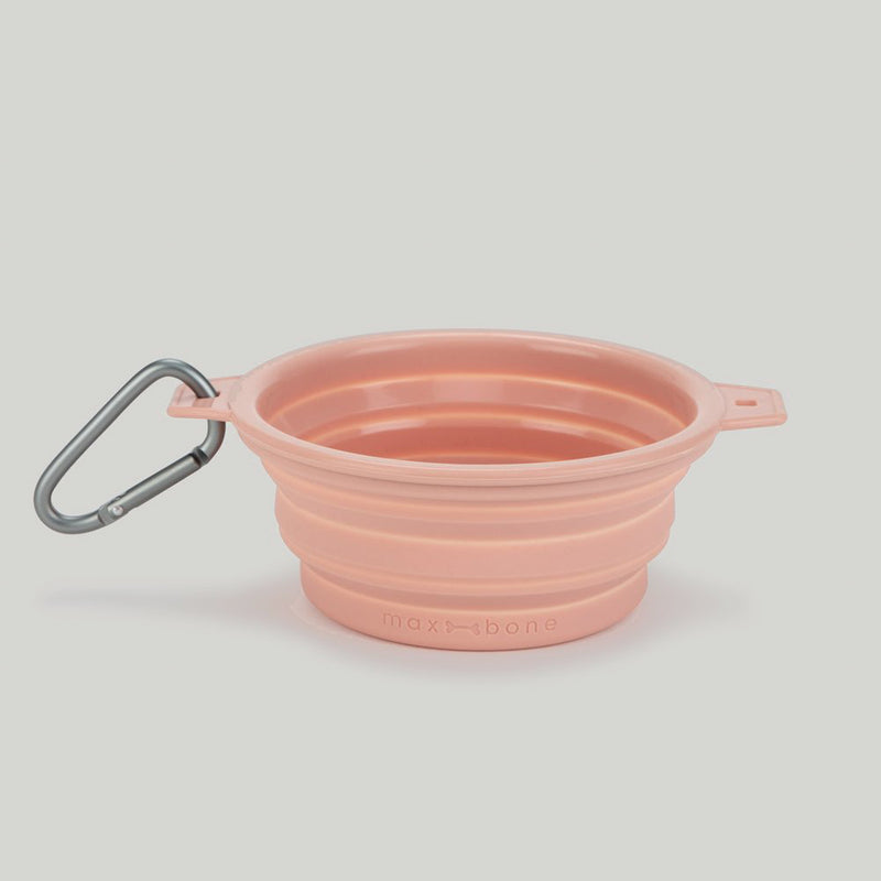 peach collapsible dog travel bowl