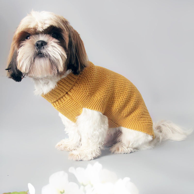 mustard wool dog jumper